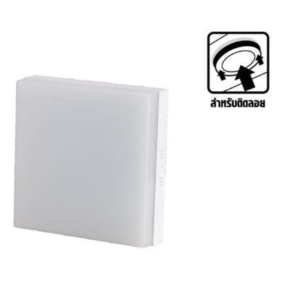 LED Surface Mounted Square EVE